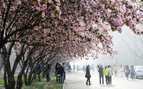 Tianjin University 4
