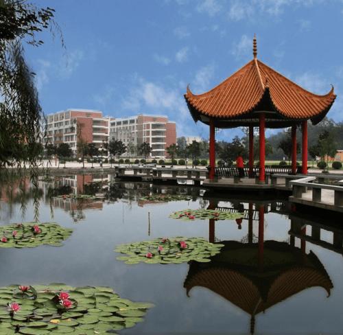 chengdu university