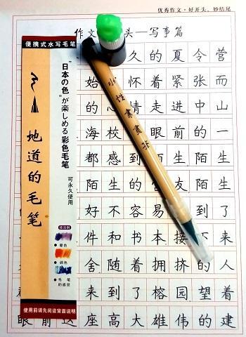 Penna-pennello per scrivere i caratteri cinesi.